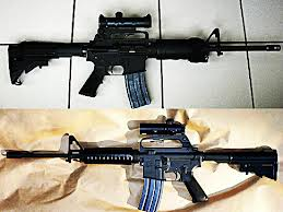 adam lanza guns